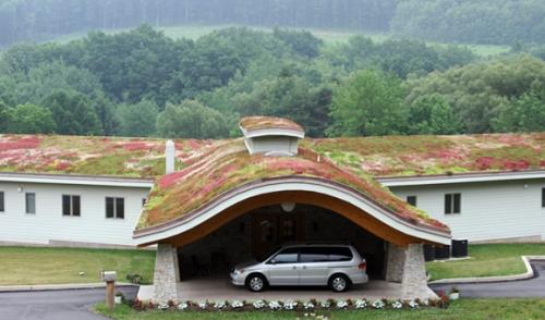 toit vegetalisé